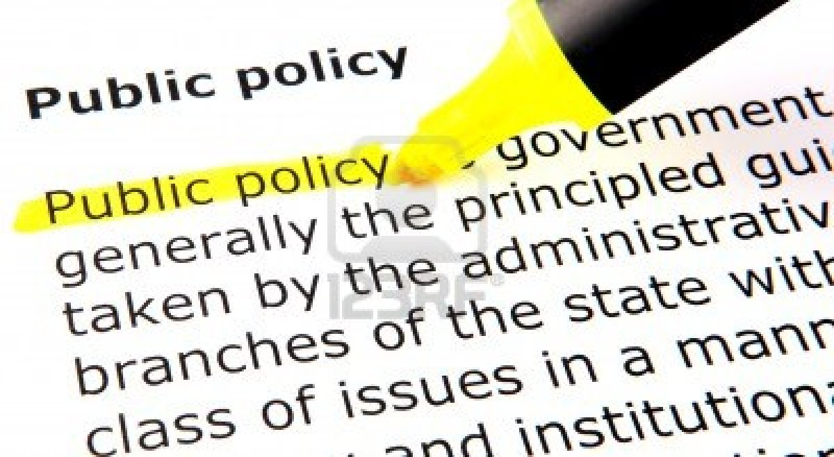 Public policy term paper topics